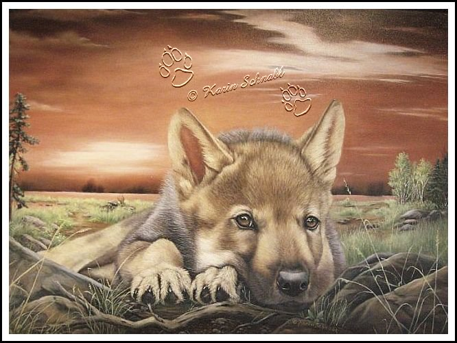 Dreaming Wolf Pup - Karin Schnabl