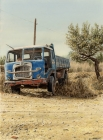 Blue Fiattruck (2001)
