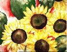 Sunflower 6 -Lutz Erler-