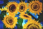 Sunflower -Lutz Erler-